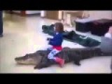 Little Girl Rides Alligator