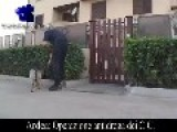 Anti-drug Operation By Carabinieri Italian Police