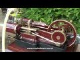 TWIN TANGYE TYPE MODEL STEAM ENGINE IN THE GARDEN