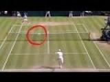 Roger Federer Vs. Pigeon - Wimbledon2015