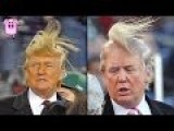 10 Shocking Donald Trump Facts You Have To See
