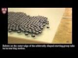 1000 Robot Swarm