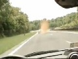 Deer Pulverized By Porsche - Hi Speed Slow-Mo Version