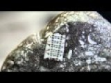 250 Million-Year-Old Microchip Found In RUSSIA!!?