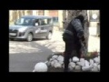 Panic At TV Station In Donetsk As Gunmen Attempt To Capture Building