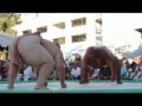 2013 US SUMO OPEN - SUMO SLAM Byamba Vs. Kelly - Official Video