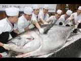 20.000 USD 170kg Fresh Tuna Butchered At A Fish Market In Japan
