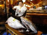 ► Bluefin Tuna Sold At The Price Of An Apartment