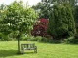 Far Away...a Garden