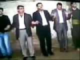 Cat Attacks Dancing Kurds