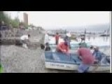 50 Ton Fish Kill Dead 'popocha' Fish Removed From Cajititlan Lagoon, Mexico