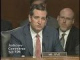Sen. Ted Cruz At Hearing On The Administration's Immigration Enforcement