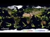 6 Months Worth Of Global Precipitation Visualized By NASA In 5 Minutes