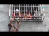 Boy Hanging Off Building With Head Stuck Between Bars