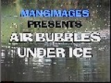 Air Bubbles Under Ice