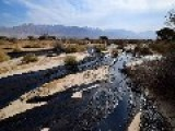 ​'Millions Of Liters' Of Oil Spilled In Israel, Flooding Nature Reserve PHOTOS