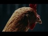 Mercedes-Benz TV MAGIC BODY CONTROL TV Commercial Chicken
