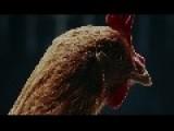 Mercedes-Benz TV MAGIC BODY CONTROL TV Commercial Chicken