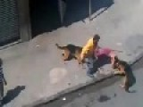 2 Dogs Attack A Man * Graphic *
