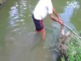 Guy Messes With An Electric Eel - Gets Crippled