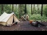 Russian Family Brings Pet Brown Bear On Camping Trip