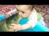 Kid Gives A French Kiss To A Fish