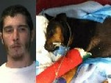 **PERVERT** Has SEX With DOG Then BEATS It With A BAT - Dog Died