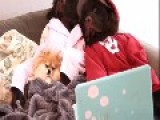 Dogs Have Adorable Netflix And Chill Day