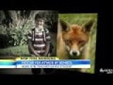 Fox Attack Gym Teacher Saves Young Student