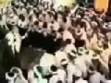 Arabic Dance #3