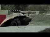 Astonishingly Smart Honey Badger Keeps Escaping Captivity