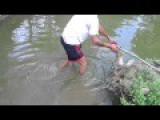 Accident While Fishing By Electric Pulses