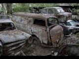 Abandoned Vintage Vehicles In The Forest - WTF?