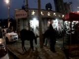 Avarage Liveleakers Image Of China Minus The Communist