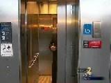 Atlanta PEE D. Is Combatting A Certain Problem In Elevators