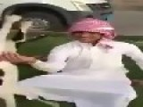 Arab Cat Juggling