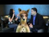Al Jazeera Vs Israel, Commentary By The Atheist Roo