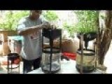 Aquaponics We All Should Be Gardening This Way-