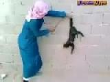 An Arab Guy Cuts Cat's Tail