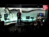 A Republican Dedicates A Dinosaur At The Creation Museum