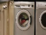 Australia: Naked Man Stuck In Washing Machine