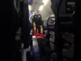 A Large Sow Is Tased And Dragged Off Of A Delta Flight Heading From Detroit To San Diegot