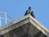 AMAZING VIDEO: Cops Talk Suicidal Man Down From Brooklyn Bridge Tower Video And Pictures