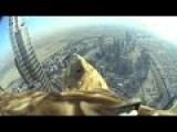 Awesome Eagle Videos Point Of View