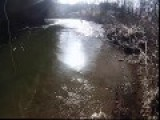 Ashe County, NC Trout Fishing
