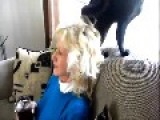 Aunt Freaks Out When Cat Attacks