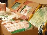 Berlin Supermarkets Discover Banana Boxes Stuffed With Cocaine