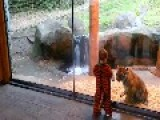 Boy In Tiger Costume Makes Tiger Friend