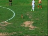 Brazil - Footballer Gets 'bite Of Luck' From Dog Pitch Invader