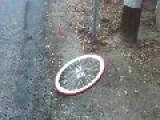 Bicycle Wheelie Fail